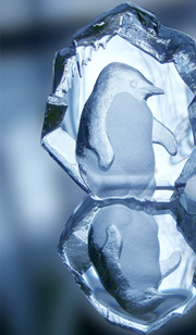 Ice Sculpture Carving in New Haven